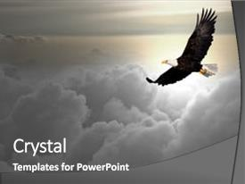 A PPT with bald eagle flying above background and a gray colored foreground.