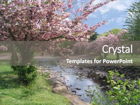 Cool new theme with cherry blossoms in the park backdrop and a gray colored foreground.