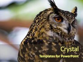 eagle scout powerpoint templates | crystalgraphics, Modern powerpoint