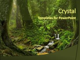 Jungle powerpoint templates crystalgraphics crystal powerpoint template with deep and dense tropical jungle themed background and a tawny brown colored toneelgroepblik Gallery