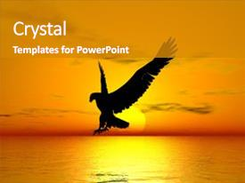 A PPT with flying eagle above the ocean background and a gray colored foreground.