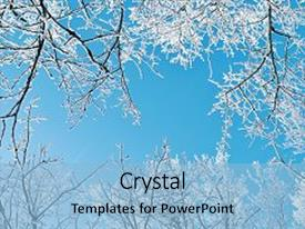 <b>Crystal</b> PowerPoint template with frosty tree tops winter background themed background and a light blue colored foreground design featuring a [design description].