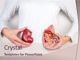 Kidney medical powerpoint templates crystalgraphics cool new theme with health dialysis holding model of human kidney backdrop and a lemonade toneelgroepblik Choice Image