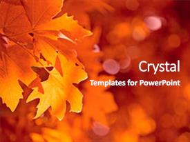 Cool new PPT theme with maple leaf - highly detailed image of autumn backdrop and a crimson colored foreground.