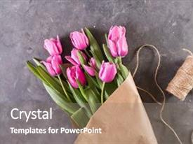 PPT theme enhanced with tulips on gray abstract background background and a gray colored foreground.